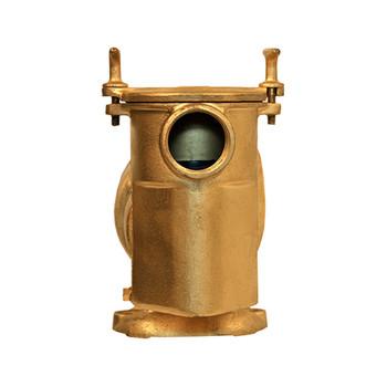 2 HP Bronze Pump
