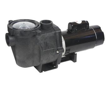 Energy Advantage 2 HP Two Speed Pump