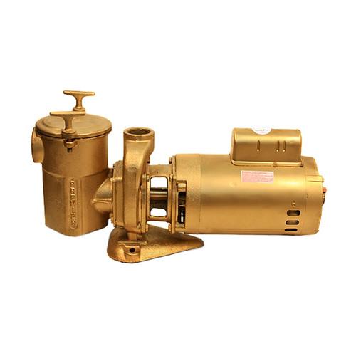 1 HP Bronze Pump