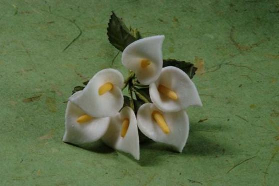 Large Calla Lilies White 72 pc bag