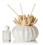 Decorative Diffuser  Coral with Scalloped Porcelain Bottom