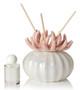 Decorative Reed Diffuser Coral Porcelain Bottom, Pink, Favor