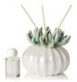 Decorative Reed Diffuser Porcelain Teal Coral Top Favor