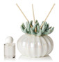 Decorative Aroma Reed Diffuser Coral Top Porcelain Teal