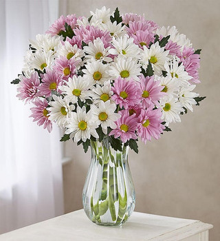 Bouquet of white, yellow and lavender daisies, COLORS MAY VARY FROM PICTURE