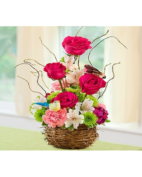 charming bird's nest basket