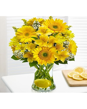 Bright bouquet of Gerber daisies, alstroemeria, daisy poms, solidago, Monte casino and lemon leaves