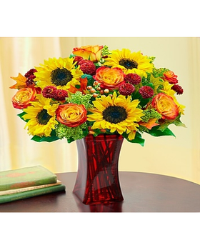 bi-color yellow and orange roses, golden sunflowers, rich burgundy poms and more