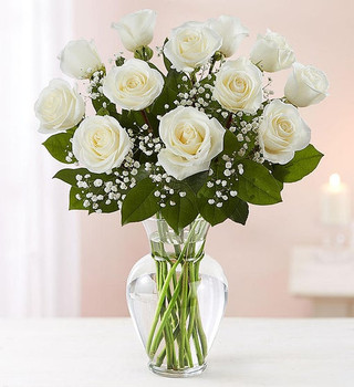 All-around arrangement with 12 long stem white roses; accented with baby's breath and assorted greenery