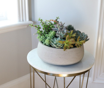 This serene succulent garden features an array of unique ornamental plants, offering a variety of textures, colors, and forms. Beautifully set inside a Newport Concrete Bowl by Accent Decor, it makes a perfect gift for the home or office, especially when displayed on a coffee table or desk.