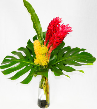 Tropical Weekend is an elegant arrangement of Pincushions, Red & Yellow Ginger, together with Large Monstera Leaves in an unique glass cylinder wit black river rocks, great at home or office, certain to become the focus point of the room.