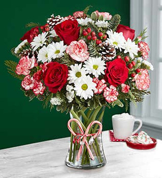 All-around arrangement with red roses, white daisy poms, bi-color red & white carnations and mini carnations; accented with red hypericum berries, assorted Christmas greenery and pinecones