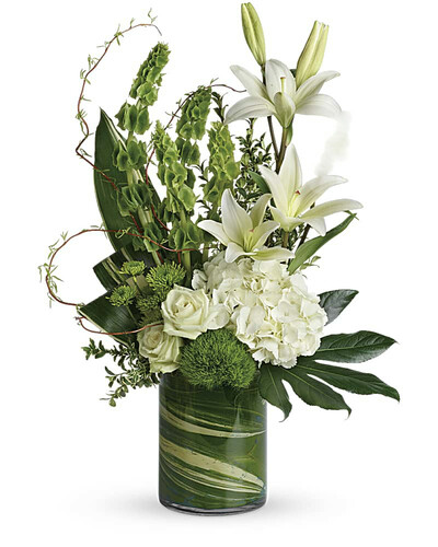 This modern bouquet shows white hydrangea, green roses, white asiatic lilies, green trick dianthus, bells of Ireland, green button spray chrysanthemums, curly willow, oregonia, variegated aspidistra leaves, small aralia leaf, green ti leaf, and lemon leaf