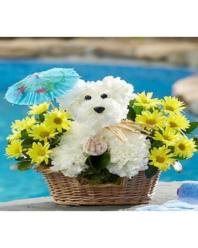 white carnations and yellow poms is hand-designed by expert florist and ready for sunny days ahead, complete with a festive seashell and umbrella.