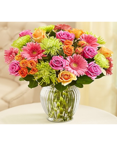 We've gathered classic roses, petite spray roses, cheery Gerber daisies and exotic Fuji mums to help you deliver a smile for birthdays, housewarmings, get well or any just because moment.