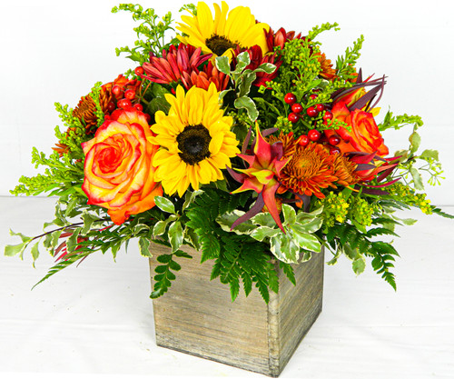 All-around arrangement with red button poms, leucadendron and hypericum, autumn-colored roses, sunflowers, bronze daisy poms; accented with solidago and assorted greenery