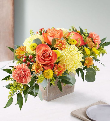 All-around centerpiece arrangement with orange roses and carnations, yellow football mums and autumn-colored daisy poms; accented with red hypericum, silver dollar eucalyptus and assorted greenery