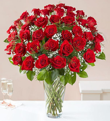 All-around arrangement with 48 long stem red roses; accented with baby's breath and assorted greenery