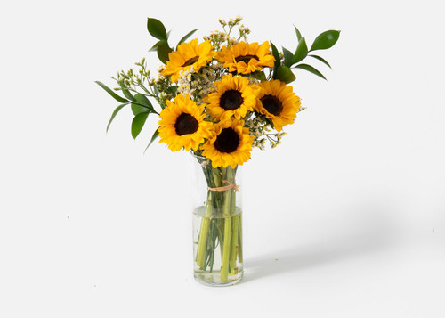Bring summer's brilliant beauty straight to their door, this Sunflower Bouquet is ready to lift spirits and celebrate the fun of the warmer months. Hand gathered in select floral farms and blooming with a vibrant sunlit yellow hue, this gorgeous flower arrangement has been picked fresh for you to send your warmest wishes to friends, family, and loved ones as a birthday, thank you, get well gift or just because. Six Sunflowers surrounded by Ruscus and Statice in a glass vase.