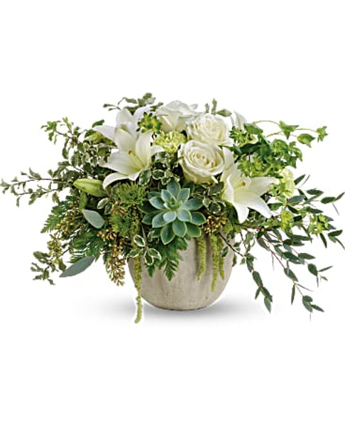 White roses, white asiatic lilies, green carnations, green cushion spray chrysanthemums,  bupleurum, leatherleaf fern, pitta negra, parvifolia eucalyptus, seeded eucalyptus, and a green potted echeveria succulent.