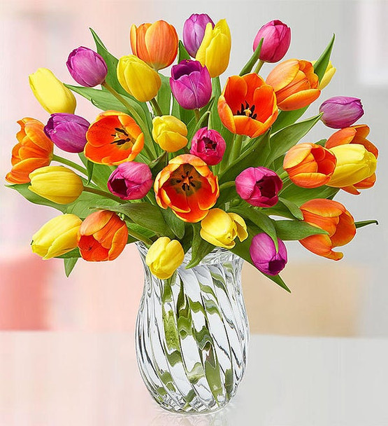 Bouquet of multicolored tulips; available in small 15, medium 20 or large 30 stems; colors may vary, in clear glass vase