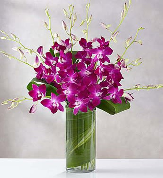 Stunning Dendrobium orchids surrounded with unique and delicately folded aspidistra leaves as if to lock them together in a sweet embrace. Set in a clear glass vase, this simple yet elegant arrangement will deliver a smile—and a hug—to that special someone.