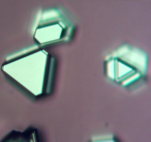Isolated Bi2Se3 Flakes on SiO2/Si-10mm*10mm