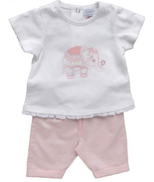 Top and Legging Elephant