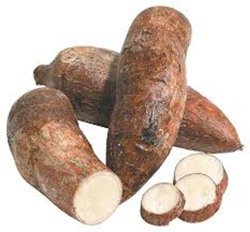 Yuca Root, Cassava