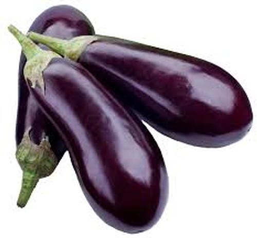American Eggplant - Jumbo Eggplant