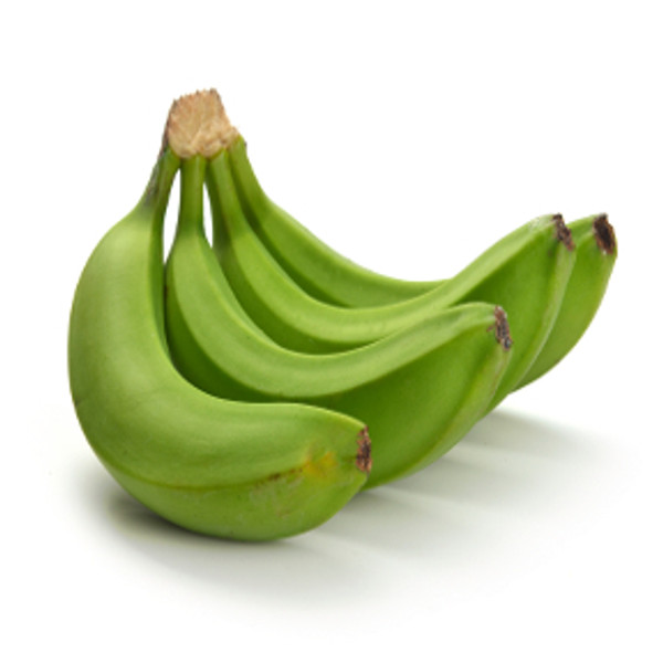 Indian Plantain