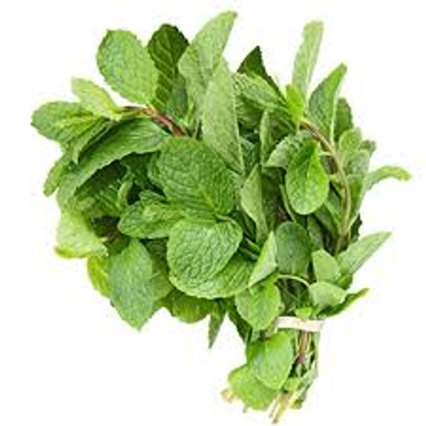 Mint Leaves (Bunch)