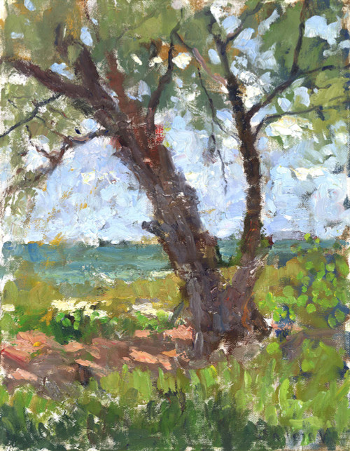 """The Old Tree at the Ocean"" by Matteo Caloiaro (SOLD)"