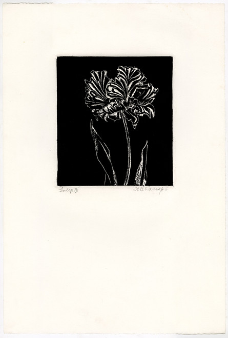 """Tulips III"", Original Etching by Anita Klebanoff"