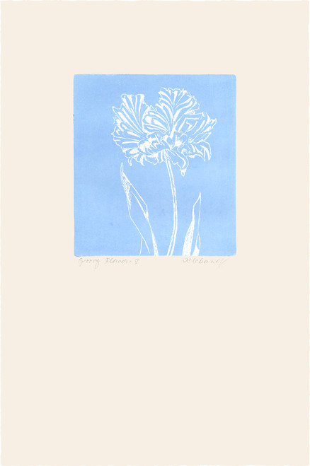 """Groovy Flowers II"", Original Etching by Anita Klebanoff"