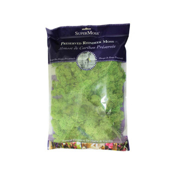 Light Green Preserved Reindeer Moss