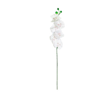 """24"""" Silk Orchid White"""