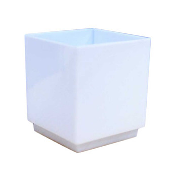 "1.75""  White Dessert Cube 12 PCs/Pack"