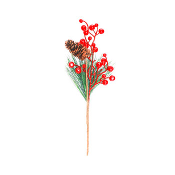 Red Berries Pick with Green Leaves and Pine Cone