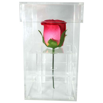 Rose Acrylic Box with Lid, Single Stem