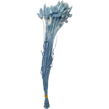 Light Blue Dried Hare's Tail Grass