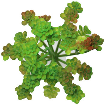 """5"""" Green Blooming Artificial Succulent Plants"""