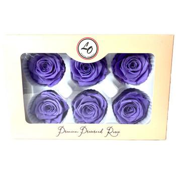 """Lavender Preserved Roses - Large 2.25"""" - 6 Pack"""