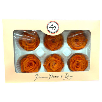 "Orange Preserved Roses - Large 2.25"" - 6 Pack"