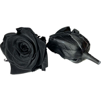 "Black Preserved Roses - Small 1.25"" - 10 Pack"