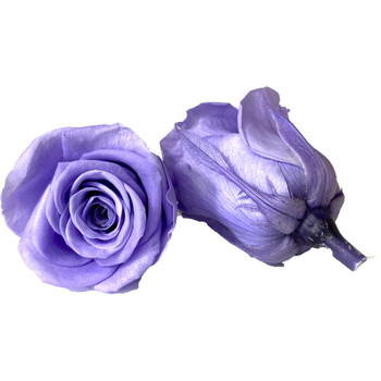 "Lavander Preserved Roses - Small 1.25"" - 10 Pack"