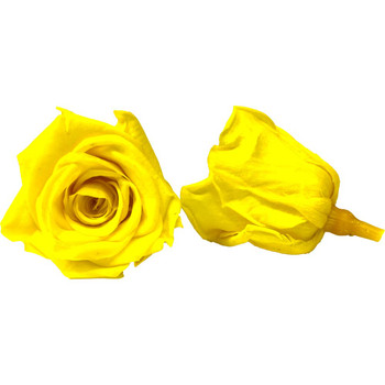 "Yellow Preserved Roses - Small 1.25"" - 10 Pack"