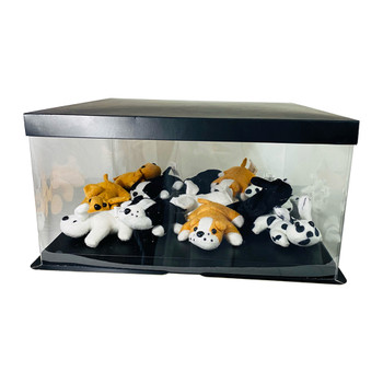 "14"" Acrylic Oversized Display Box - Black"