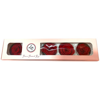 Red Preserved Roses - 6-7cm - 5 Pack