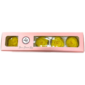 """Yellow Preserved Roses - Extra Large 2.75"""" - 5 Pack"""